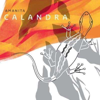 """""""Calandra"""", il nuovo album degli Amanita"""